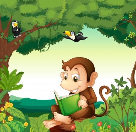 animales de la selva: Ilustraci�n de un mono leyendo un libro en el bosque Vectores