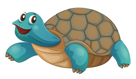 sideview: Illustration of a turtle smiling on a white background