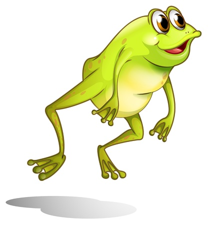 Illustration of a green frog hopping on a white background Ilustração