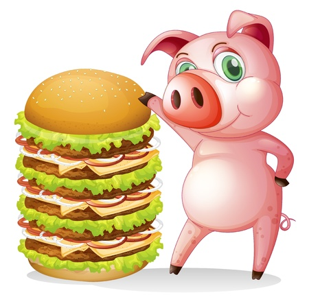 Illustration of a fat pig beside the giant hamburger on a white background Vector