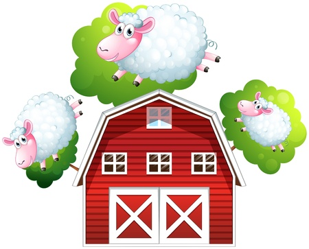 sheeps: Illustration of the three jumping sheeps on a white background Illustration