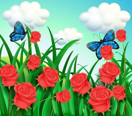 long stem: Illustration of the butterflies in the garden