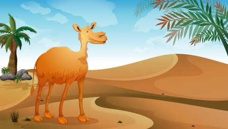 Illustration of a camel in the desert Vector