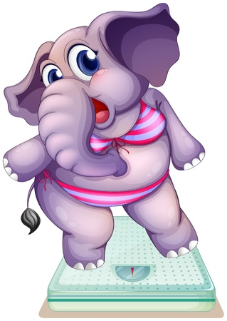 Illustration of an elephant above the weighing scale on a white background Stock Vector - 20518195