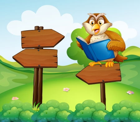 nocturnal: Illustration of an owl reading above an empty arrow signboard
