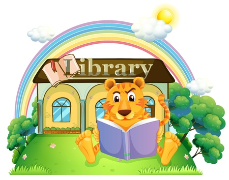 Illustration of a tiger reading a book outside the library on a white background Stock Vector - 20517993
