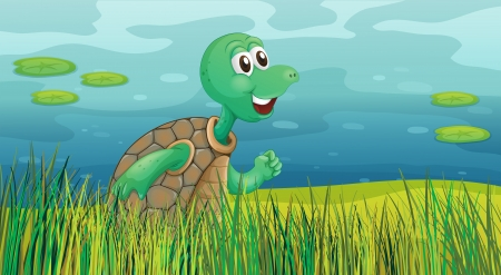 Illustration of a turtle running along the pond