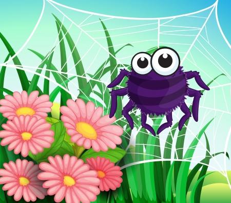 flower spider: Illustration of a spider web at the garden