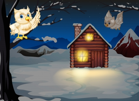 Illustration of the owls appearing in the middle of the night near the wooden house Vector
