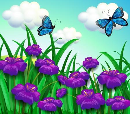 Illustrazione delle due farfalle blu presso il giardino con fiori viola Archivio Fotografico - 20518025