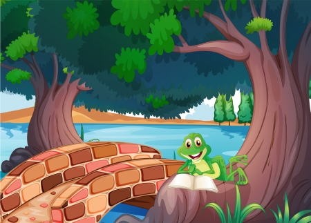 Illustration of a frog reading under the tree beside a bridge Vector