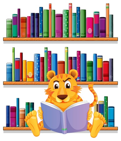 wooden shelves: Illustration of an angry tiger reading in front of the wooden shelves with books on a white background