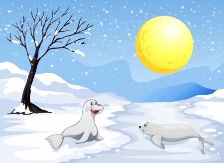 Illustration of the sea lions playing with the snow under the fullmoon Stock Vector - 20517726