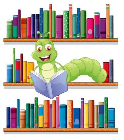 lectura: Ilustración de una oruga leyendo un libro sobre un fondo blanco Vectores