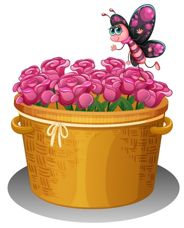 Illustration of a basket of pink roses with a butterfly on a white background  Vector
