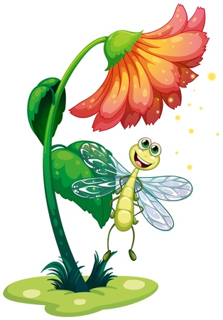 Illustration of a dragonfly flying under the flower on a white background  Vector