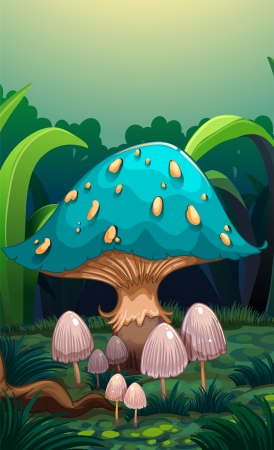 magical forest: Illustration of a giant mushroom surrounded with small mushrooms