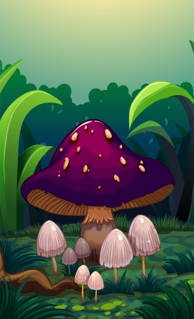 giant mushroom: Illustration of a giant mushroom surrounded with small mushrooms