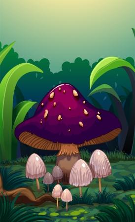 surrounded: Illustrazione di un fungo gigante circondato da piccoli funghi Vettoriali