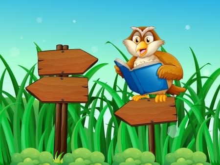 木製矢印板の上の本を読んで、フクロウのイラスト  イラスト・ベクター素材