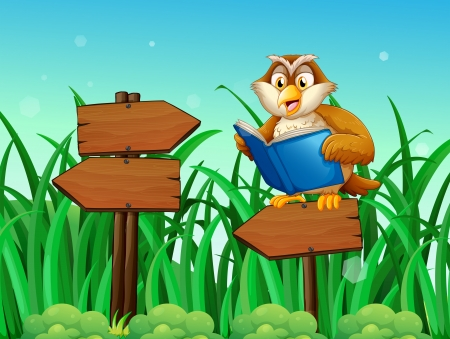 Illustration of an owl reading a book above a wooden arrow board  Illustration