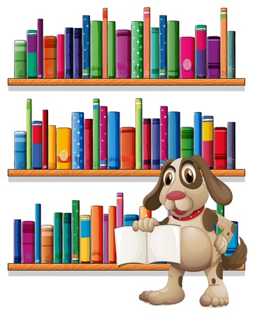 Illustration of a dog holding a book in front of the bookshelves on a white background  Stock Vector - 20727503