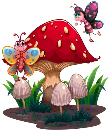 giant mushroom: Illustration of the butterflies flying near a giant mushroom on a white bakcground  Illustration