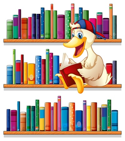 Illustration of a library with a duck reading on a white background Stock Vector - 20727534