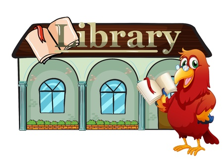 Illustration of a parrot holding a book outside the library on a white background Stock Vector - 20727562