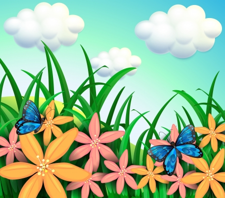Illustration of the butterflies and flowers at the garden
