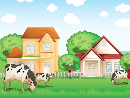 milking: Illustration of the three cows eating in front of the neighborhood Illustration