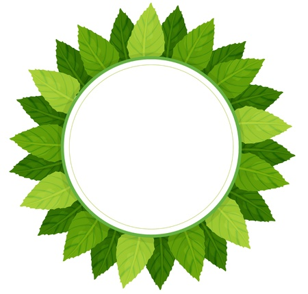 Illustration of an empty round template surrounded with green leaves on a white background  Stock Vector - 20888652