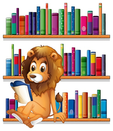fantasy book: Illustration of a lion reading a book while sitting on a bookshelf on a white background