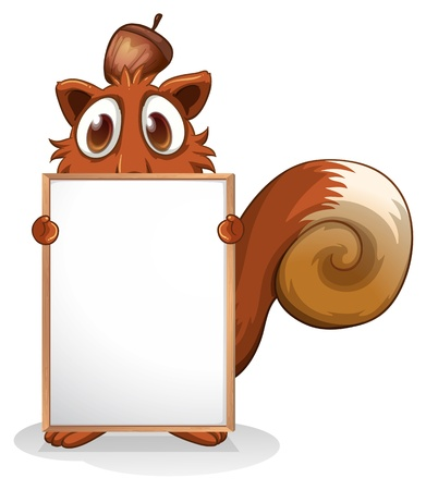 squirrel isolated: Illustration of a squirrel with an empty whiteboard on a white background  Illustration
