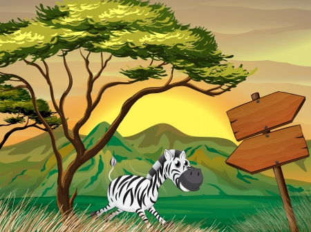 lllustration of a zebra running following the wooden arrowboards  Vector