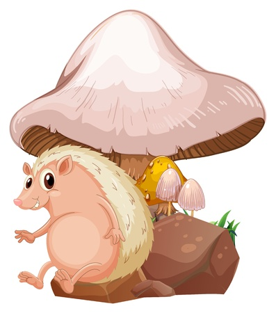 giant mushroom: Illustration of a molehog near the giant mushroom on a white background