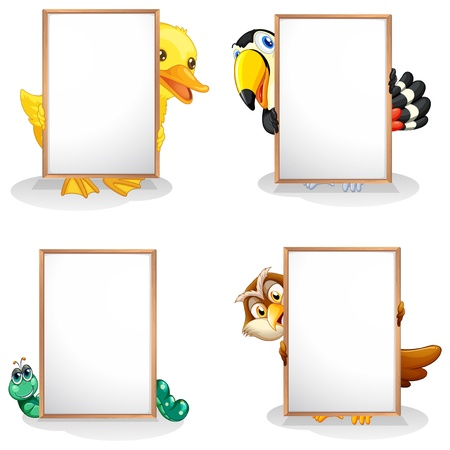 sign blank sign: Illustration of the animals hiding at the back of the whiteboards on a white background  Illustration