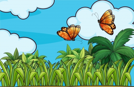 garden scenery: Illustration of the butterflies flying in the garden