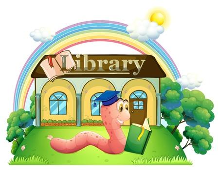 lombriz: Ilustración de un gusano que lleva un casquillo de la graduación de lectura frente a la biblioteca en un fondo blanco Vectores