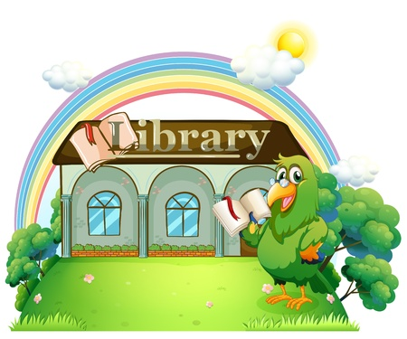 Illustration of a green parrot reading outside the library on a white background  Stock Vector - 20888966