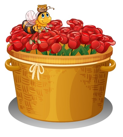 Illustration of a bee at the basket full of red roses on a white background Vector