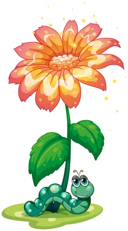 earthworm: Illustration of an earthworm under the flower on a white background