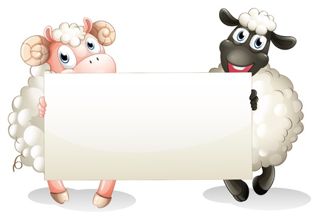 Illustration of the two sheeps holding an empty banner on a white background Illustration
