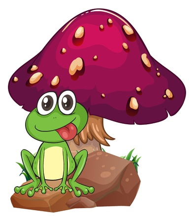 toxic mushroom: Illustration of a frog above the rock with a mushroom at the back on a white background