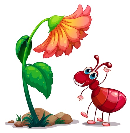 red ant: Illustration of a giant flower beside the red ant on a white background