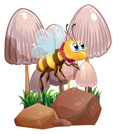 Illustration of a bee near the mushrooms and rocks on a white background Stock Vector - 21094947
