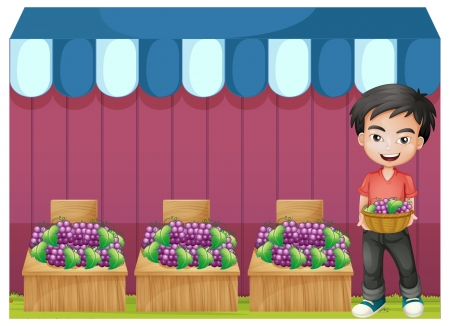 Illustration of a boy selling grapes on a white background Stock Vector - 21094979