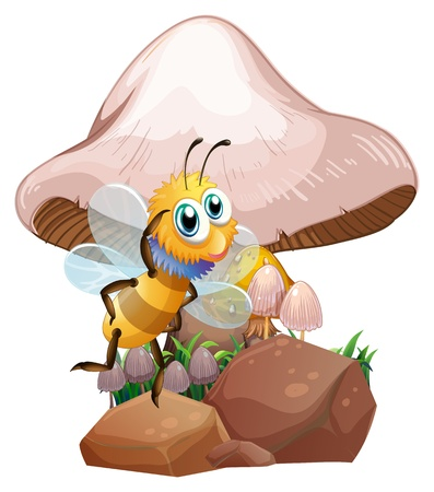 Illustration of a bee near the mushrooms on a white background Stock Vector - 21095016