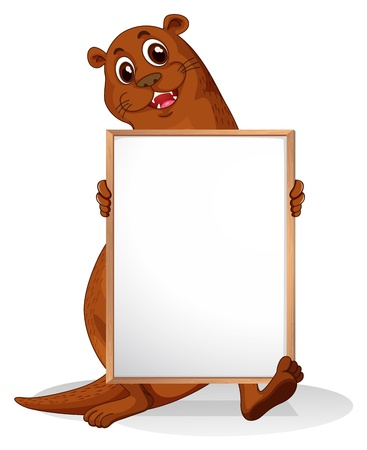 animal frame: Illustration of a sealion holding an empty whiteboard on a white background