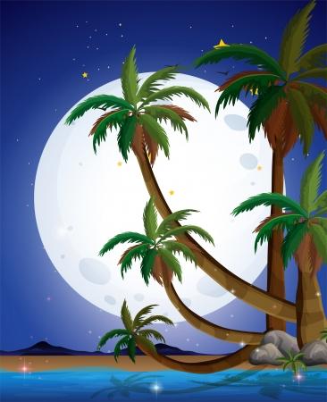 recursos naturales: Ilustración de una playa con una luna llena brillante Vectores